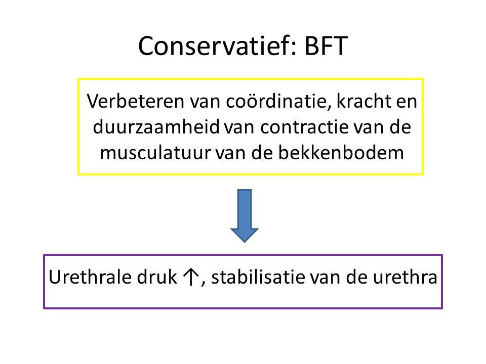 Conservatief: BFT