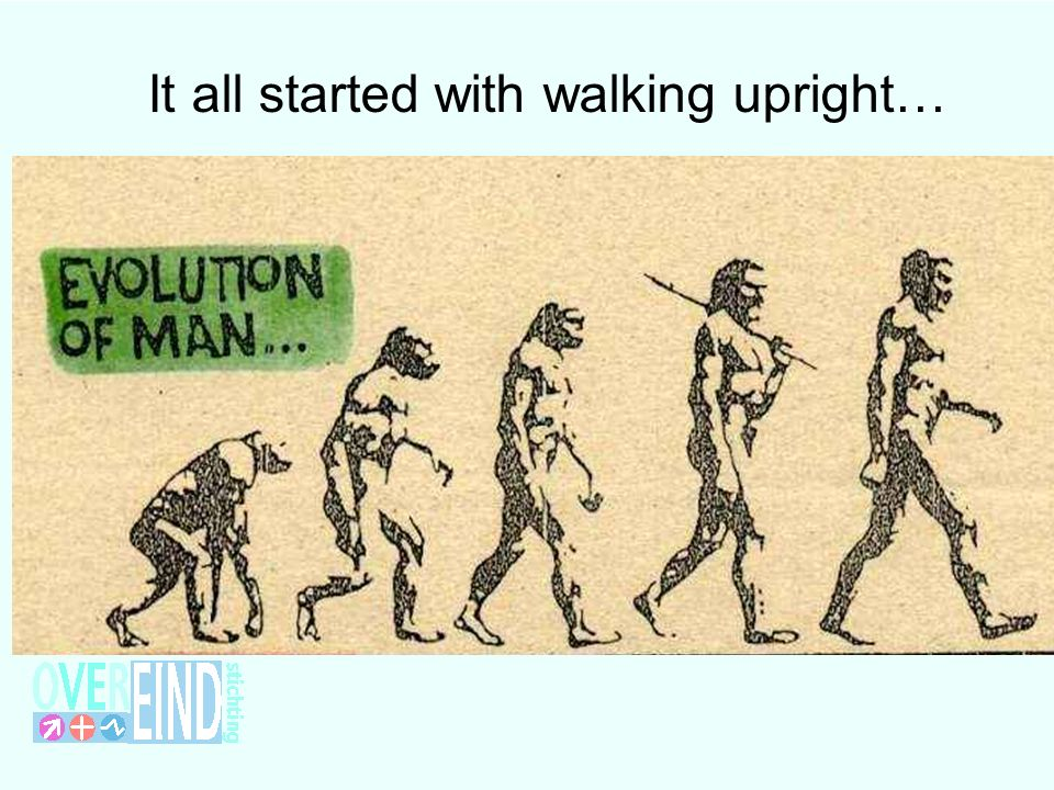 It all started with walking upright…