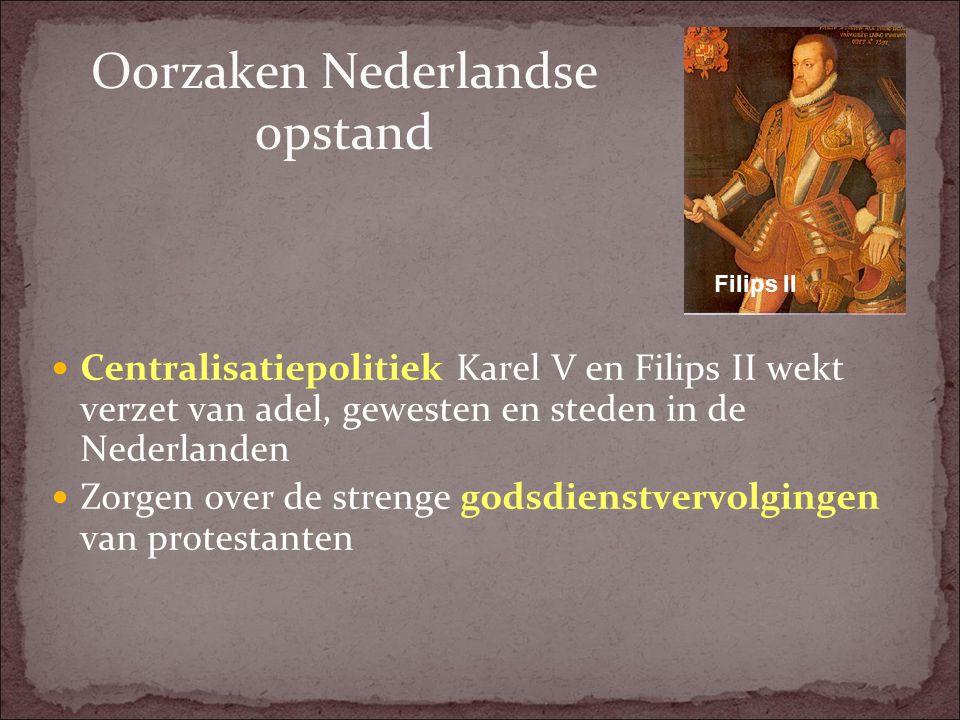 Oorzaken Nederlandse opstand