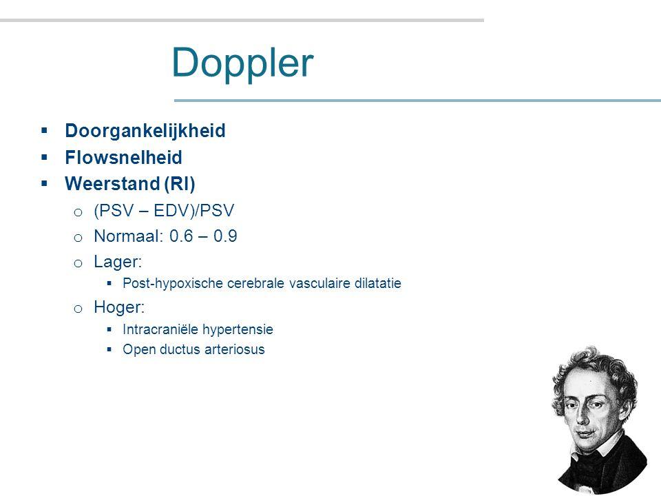 Doppler Doorgankelijkheid Flowsnelheid Weerstand (RI) (PSV – EDV)/PSV