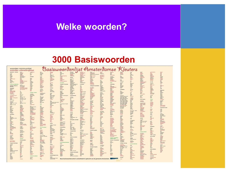 Welke woorden 3000 Basiswoorden