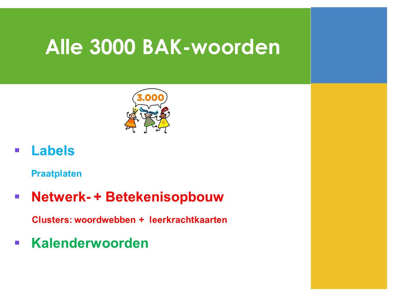 Alle 3000 BAK-woorden Labels Netwerk- + Betekenisopbouw