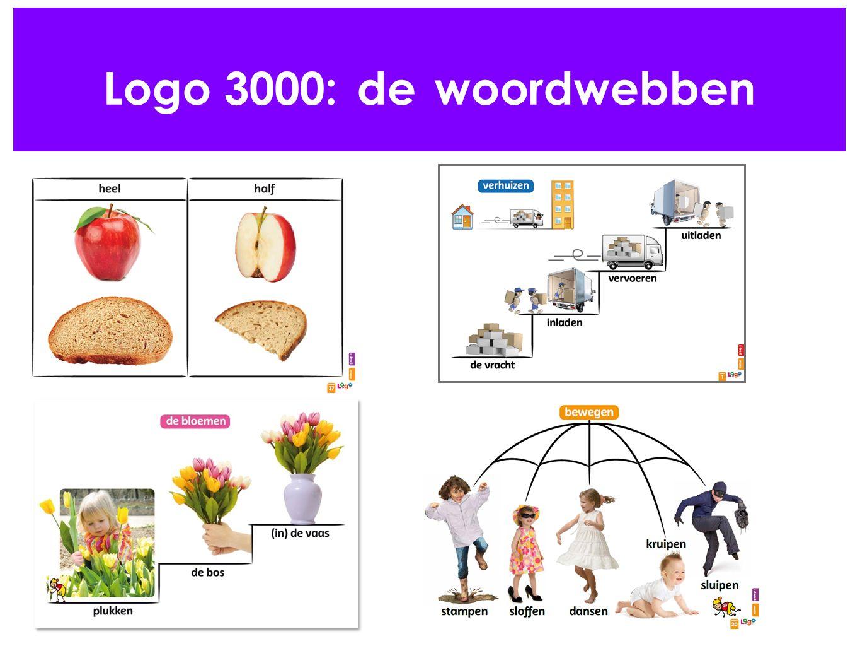 Logo 3000: de woordwebben