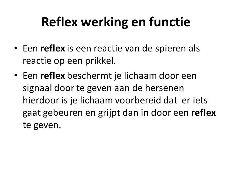 Reflex werking en functie