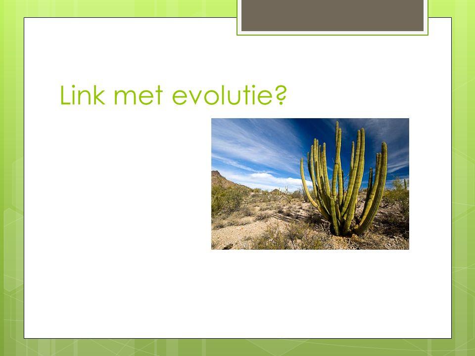 Link met evolutie