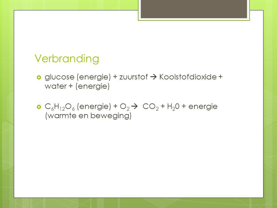 Verbranding glucose (energie) + zuurstof  Koolstofdioxide + water + (energie) C6H12O6 (energie) + O2  CO2 + H20 + energie (warmte en beweging)