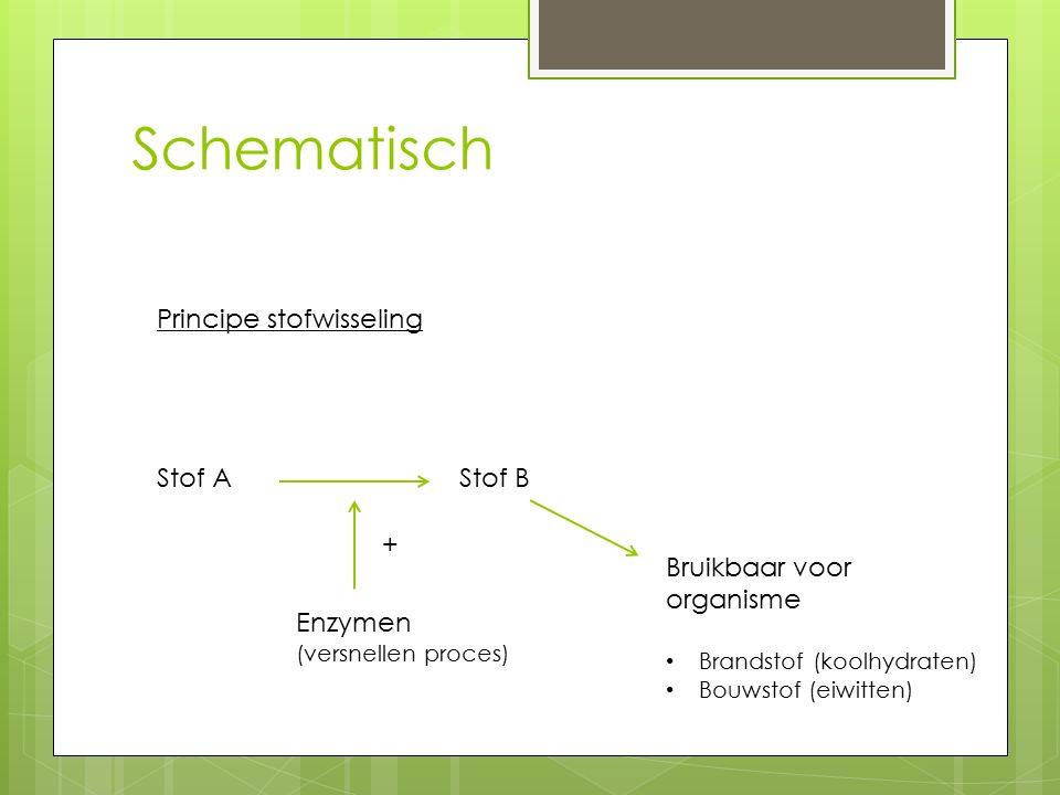 Schematisch Principe stofwisseling Stof A Stof B +