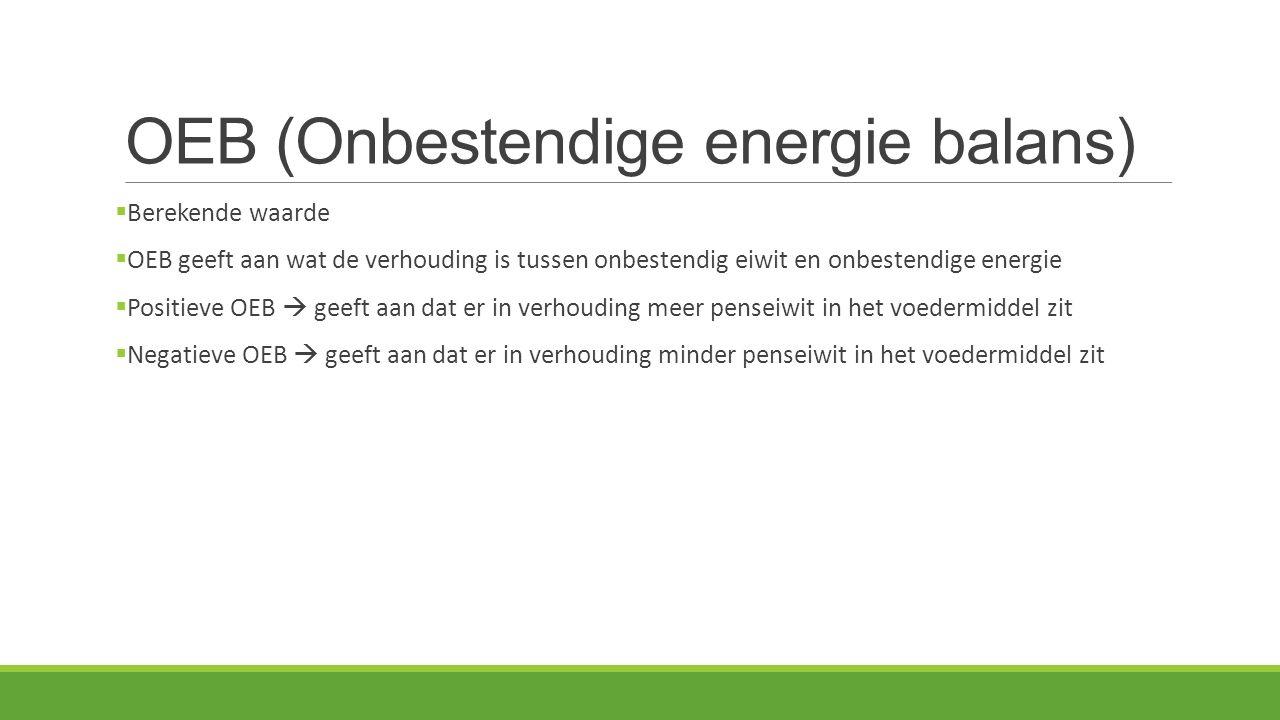 OEB (Onbestendige energie balans)