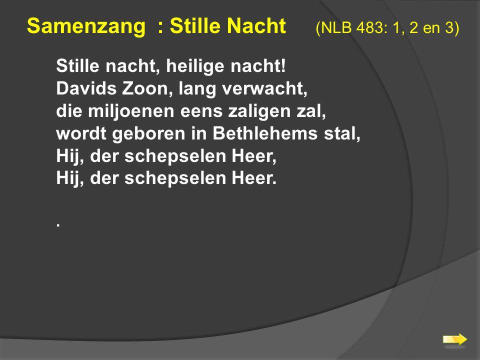 Samenzang : Stille Nacht (NLB 483: 1, 2 en 3)