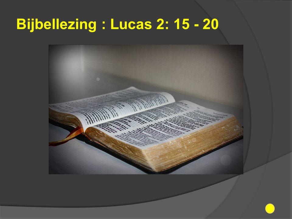 Bijbellezing : Lucas 2: 15 - 20