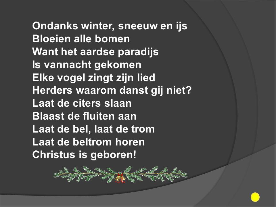 Ondanks winter, sneeuw en ijs Bloeien alle bomen Want het aardse paradijs Is vannacht gekomen Elke vogel zingt zijn lied Herders waarom danst gij niet.
