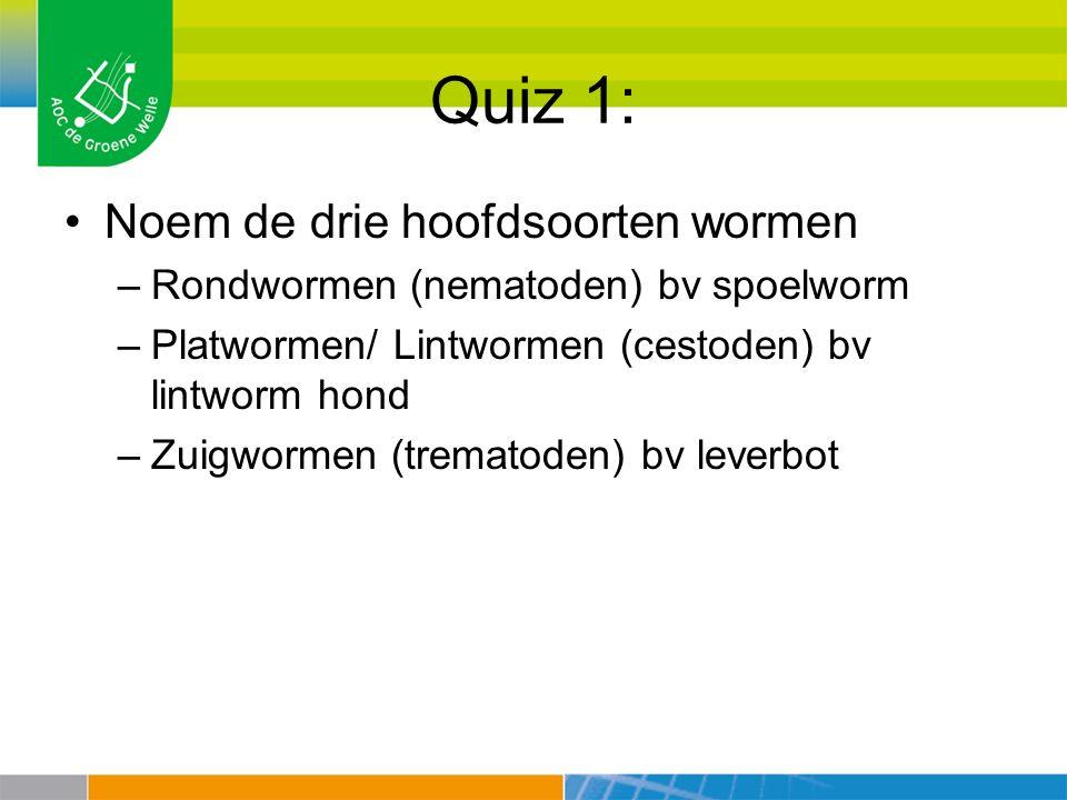 Quiz 1: Noem de drie hoofdsoorten wormen