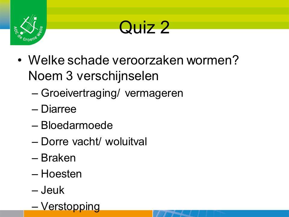 Quiz 2 Welke schade veroorzaken wormen Noem 3 verschijnselen