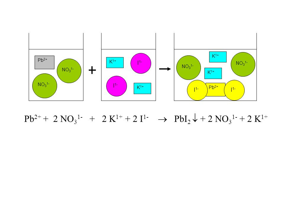 Pb2+ + 2 NO31- + 2 K1+ + 2 I1-  PbI2  + 2 NO31- + 2 K1+