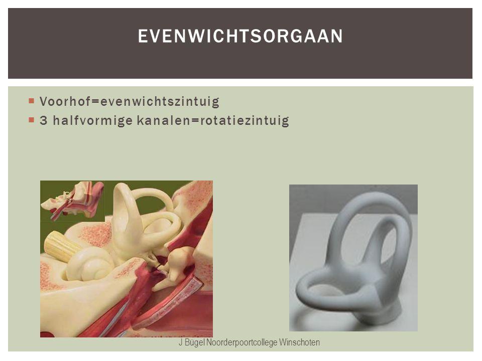 J Bügel Noorderpoortcollege Winschoten