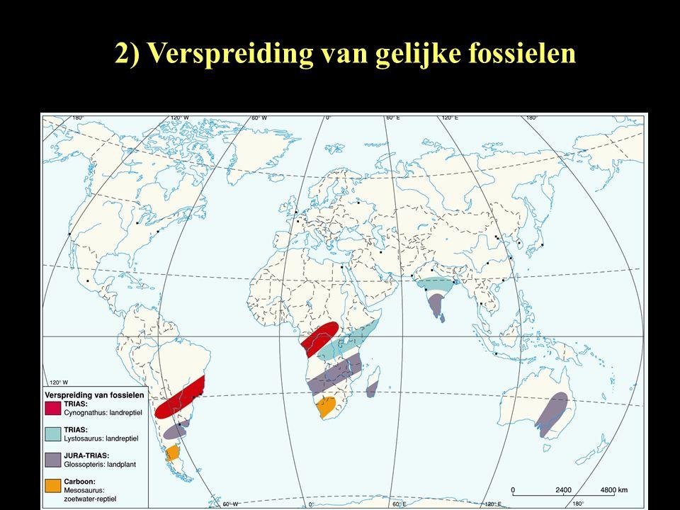 2) Verspreiding van gelijke fossielen