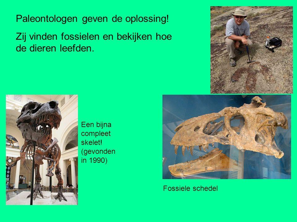 Paleontologen geven de oplossing!