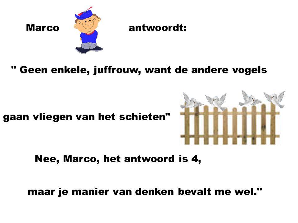 Marco antwoordt: Geen enkele, juffrouw, want de andere vogels. gaan vliegen van het schieten