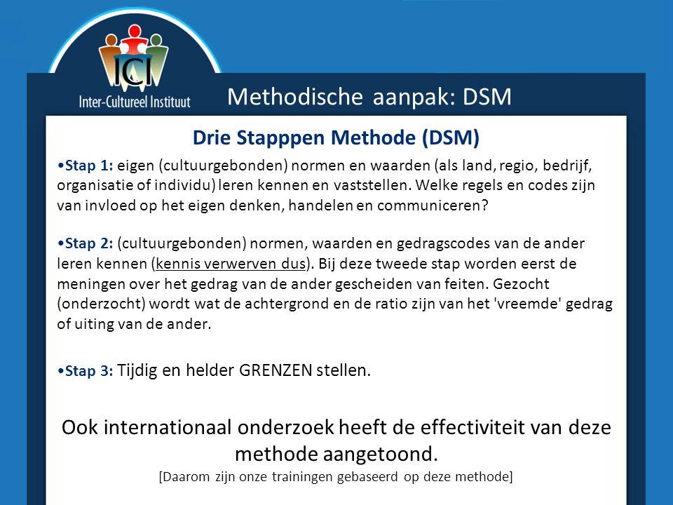 Methodische aanpak: DSM