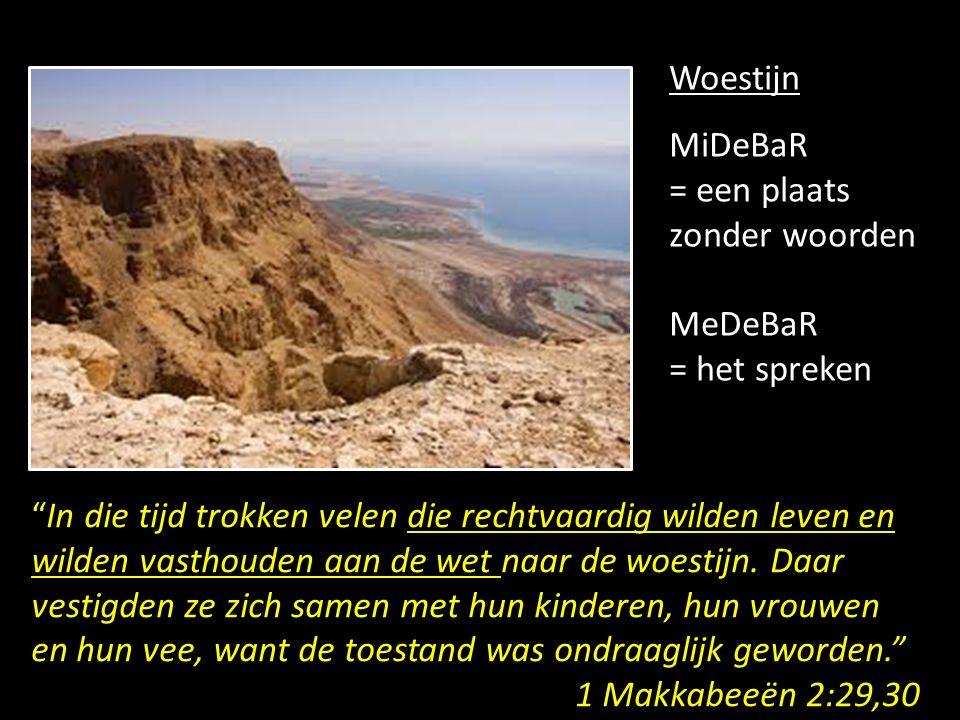 Woestijn MiDeBaR. = een plaats zonder woorden. MeDeBaR. = het spreken.