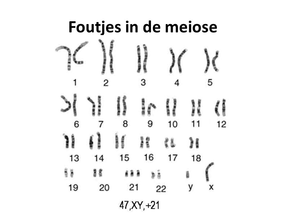 Foutjes in de meiose