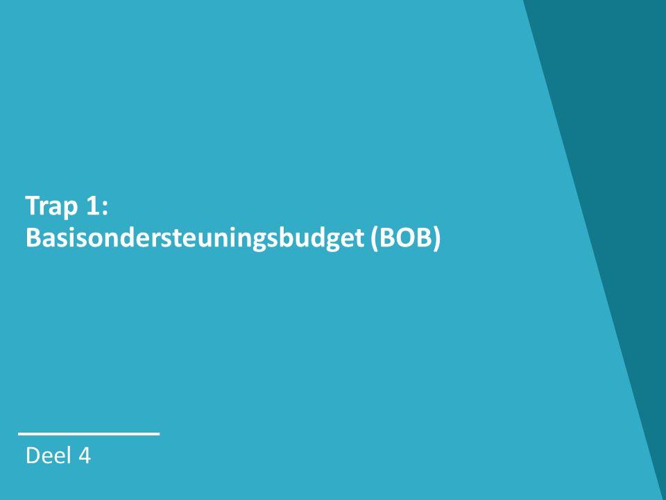 Trap 1: Basisondersteuningsbudget (BOB)