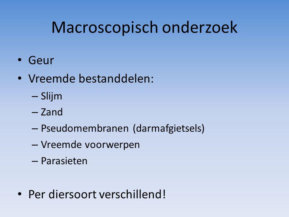 Macroscopisch onderzoek