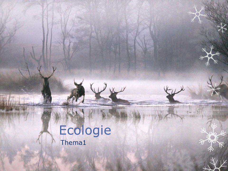 Ecologie Thema1