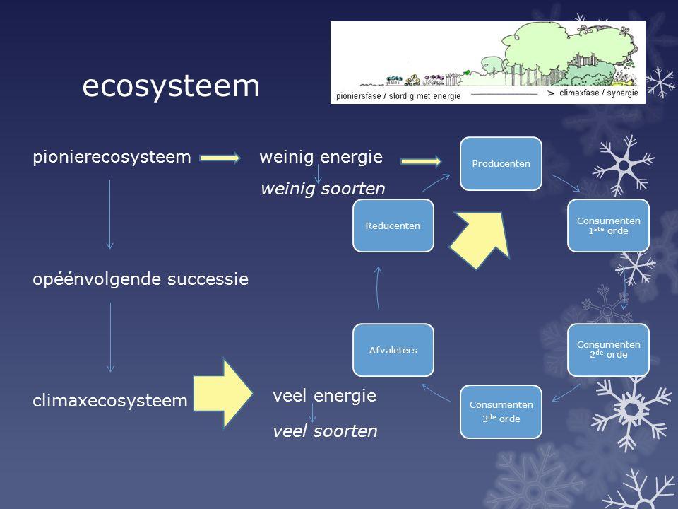 ecosysteem pionierecosysteem opéénvolgende successie climaxecosysteem