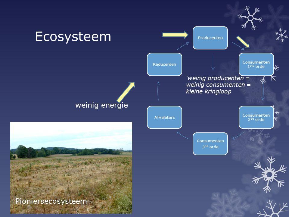 Ecosysteem weinig energie Pioniersecosysteem