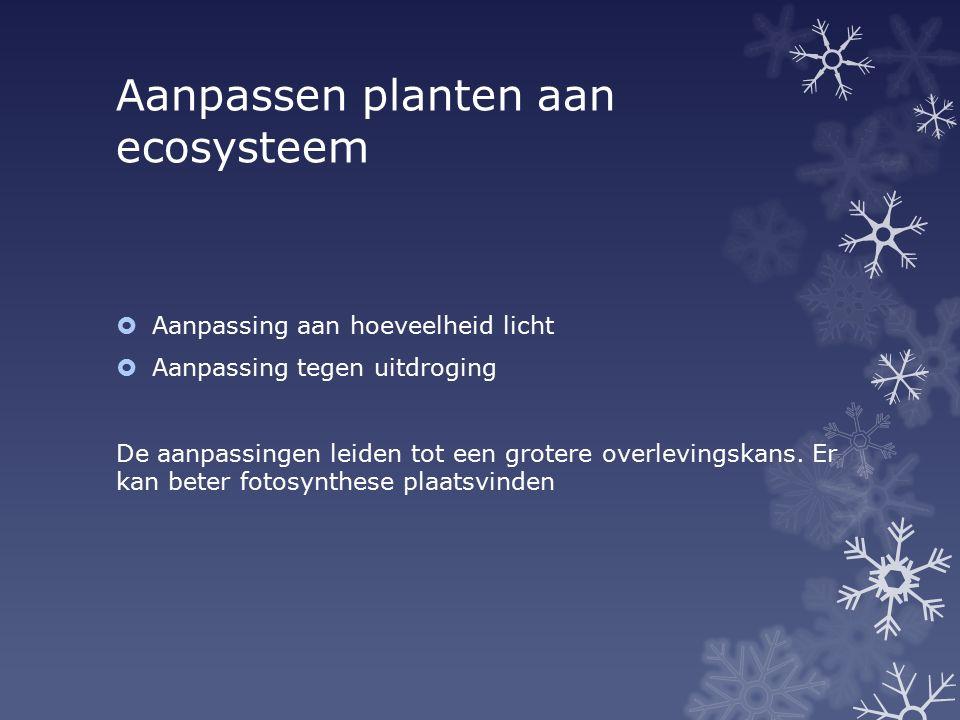 Aanpassen planten aan ecosysteem