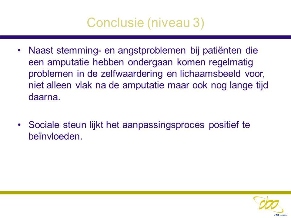 Conclusie (niveau 3)