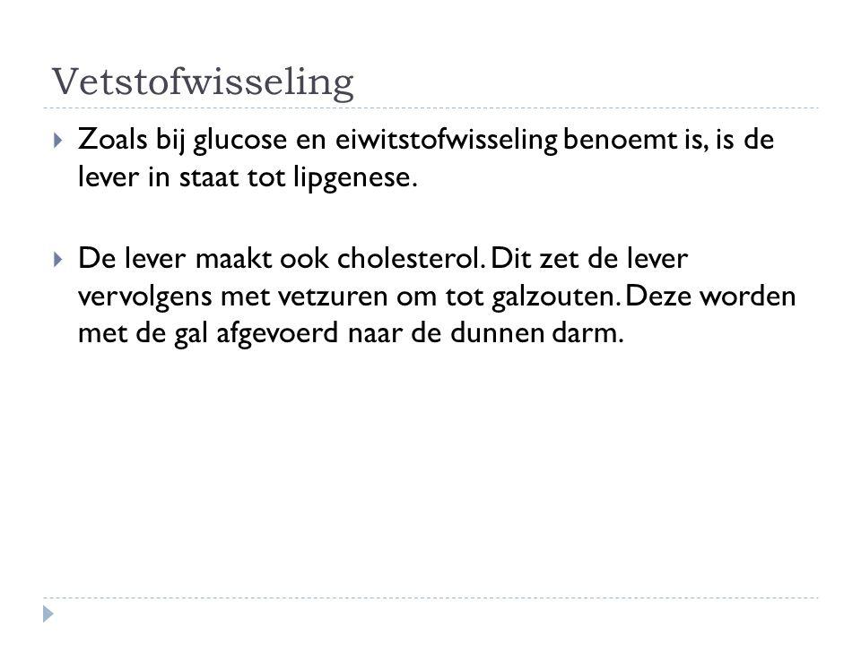 Vetstofwisseling Zoals bij glucose en eiwitstofwisseling benoemt is, is de lever in staat tot lipgenese.