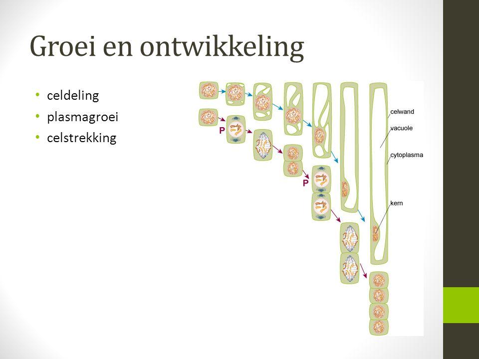 Groei en ontwikkeling celdeling plasmagroei celstrekking
