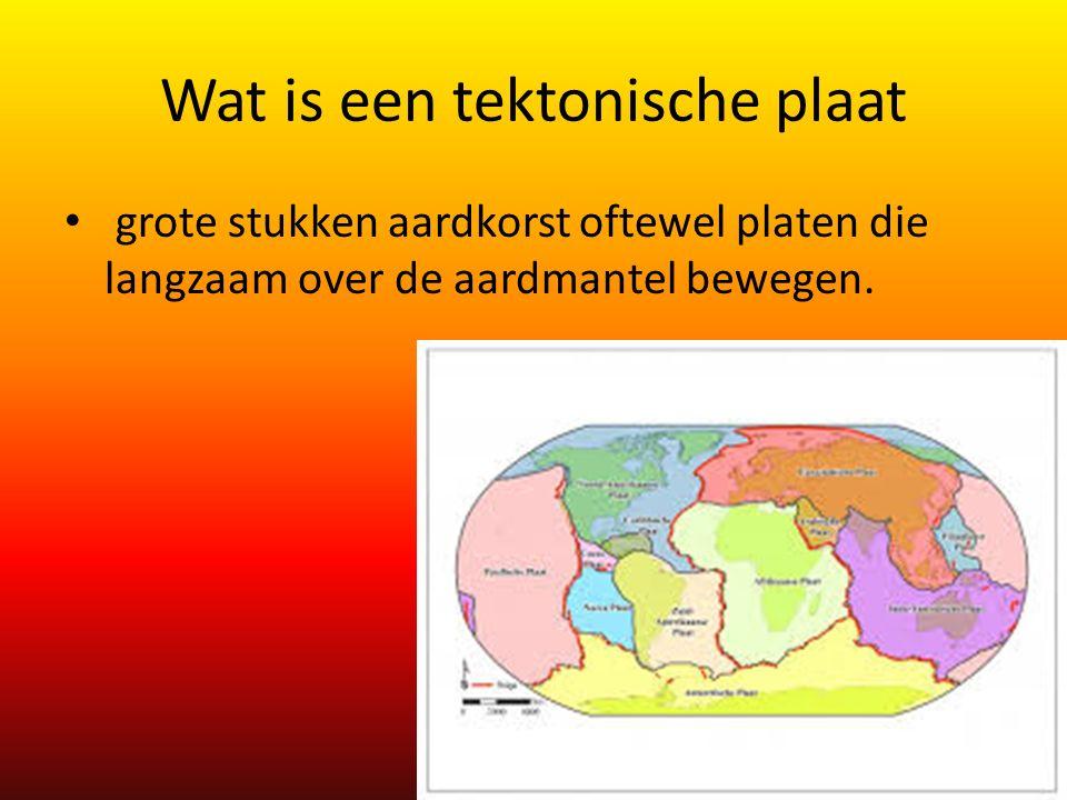 Wat is een tektonische plaat