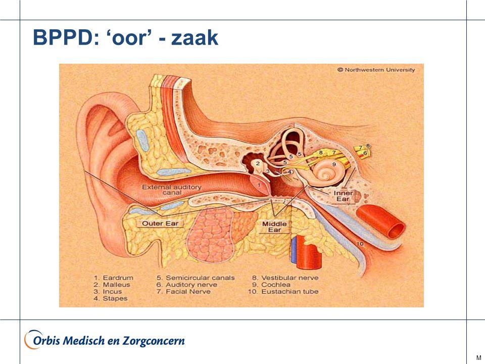 BPPD: 'oor' - zaak M