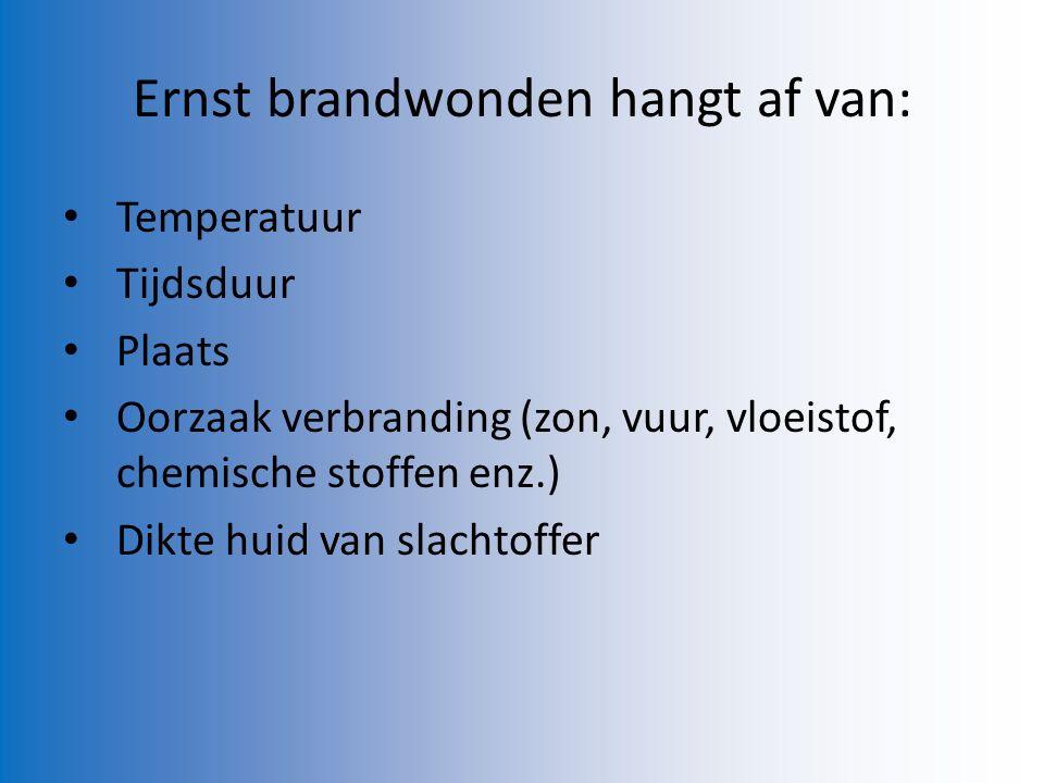 Ernst brandwonden hangt af van:
