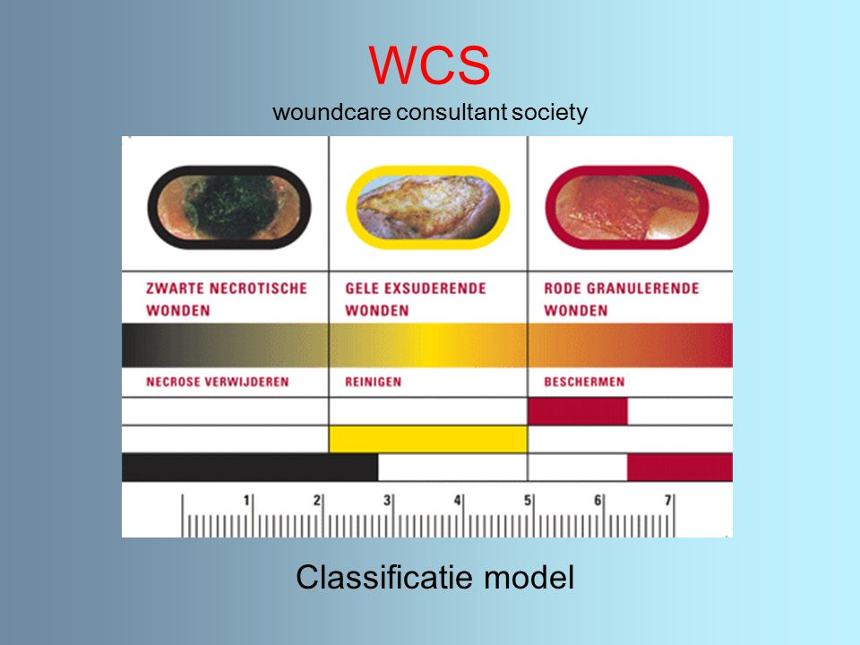WCS woundcare consultant society