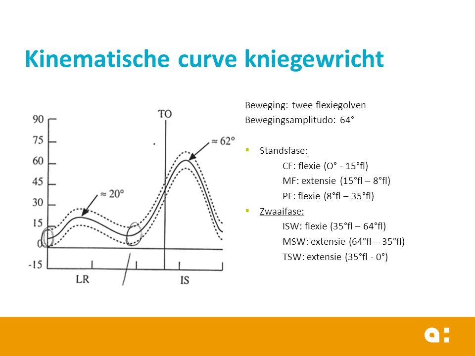 Kinematische curve kniegewricht