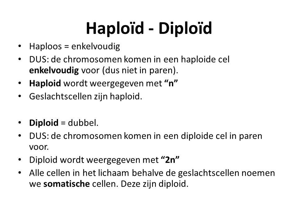 Haploïd - Diploïd Haploos = enkelvoudig