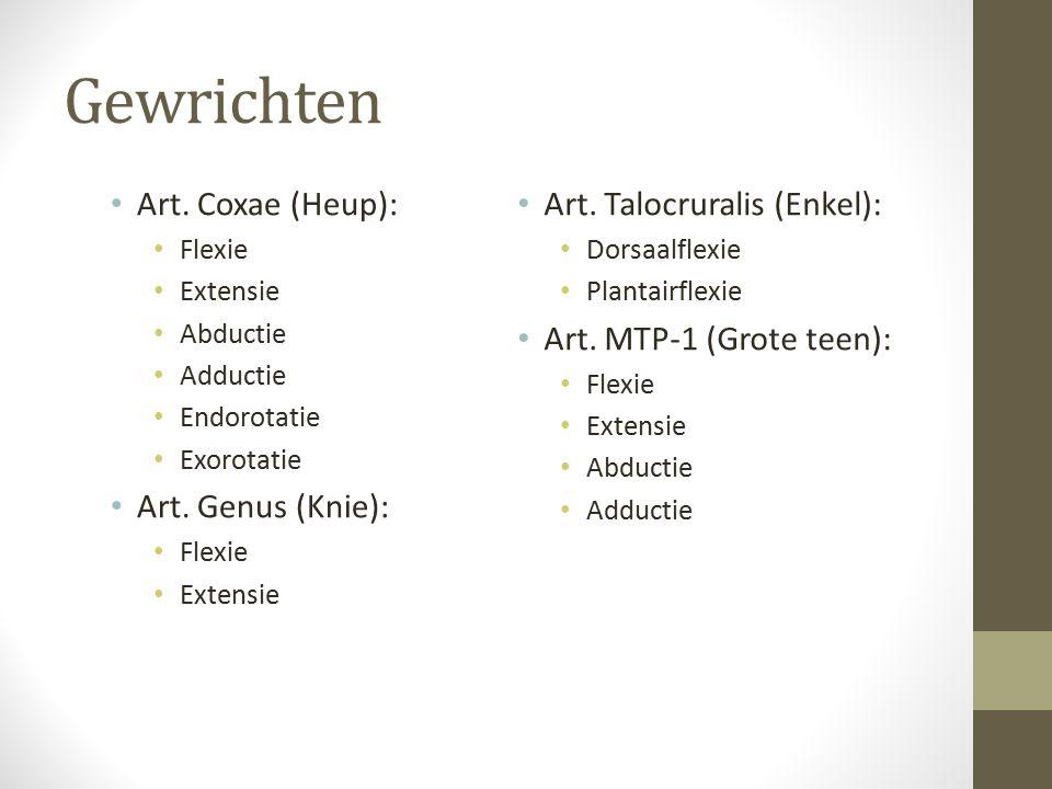 Gewrichten Art. Coxae (Heup): Art. Genus (Knie):