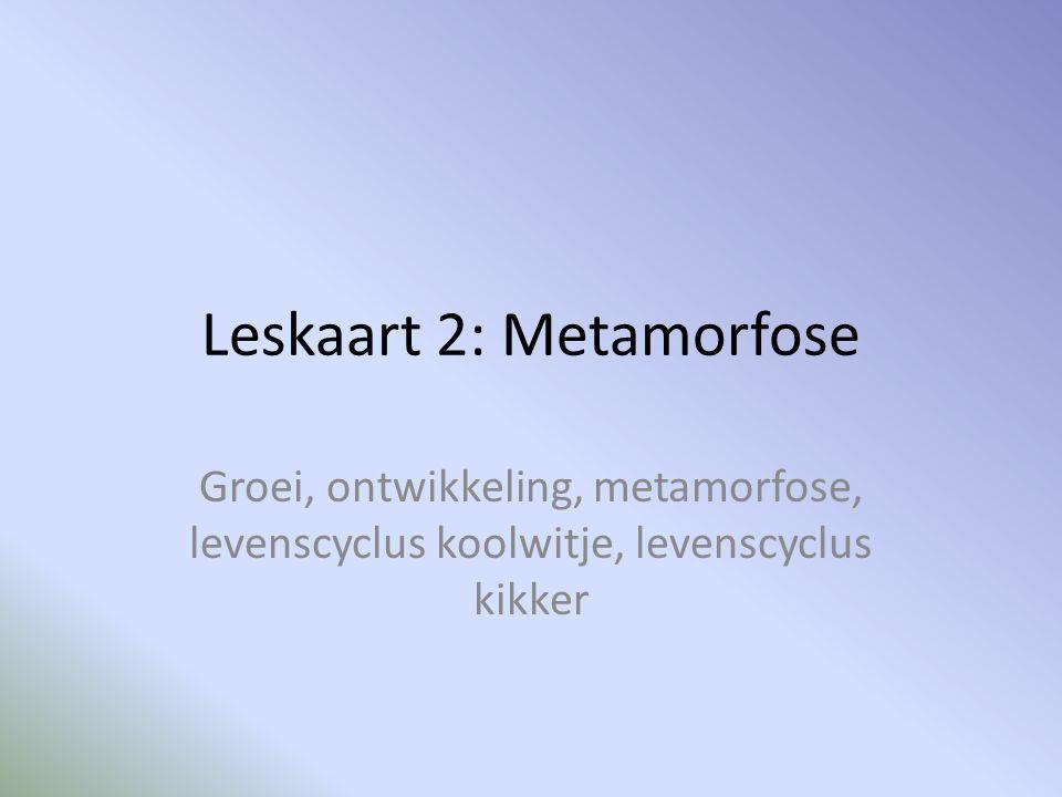 Leskaart 2: Metamorfose