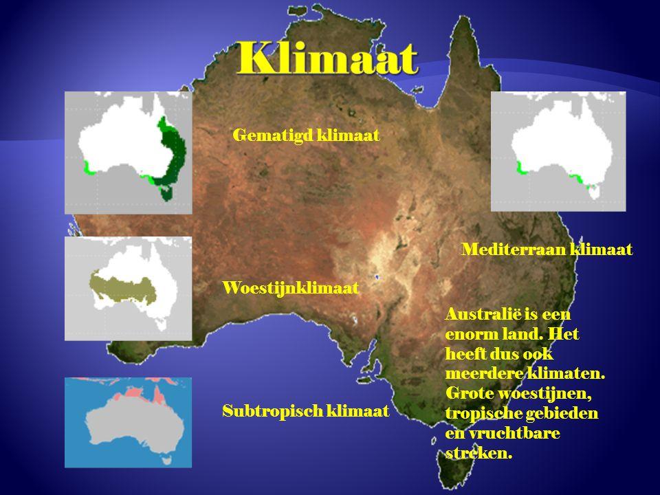 Klimaat Gematigd klimaat Mediterraan klimaat Woestijnklimaat