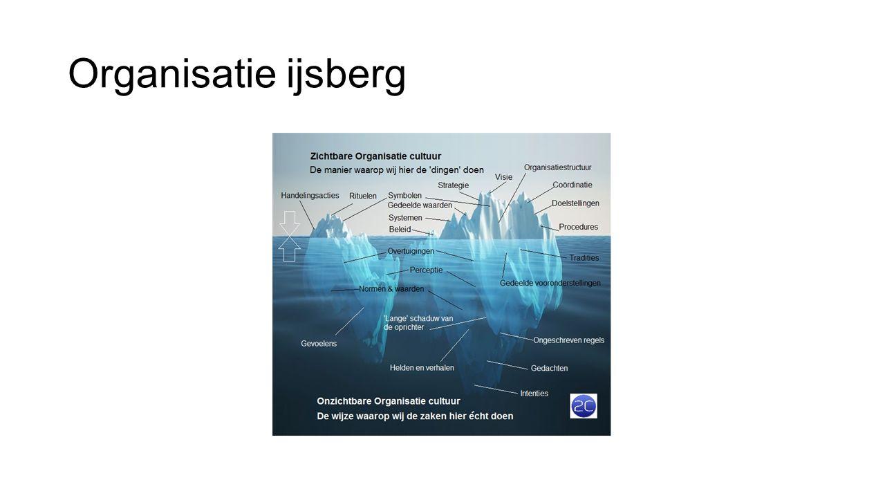 Organisatie ijsberg