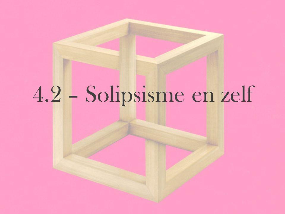 4.2 – Solipsisme en zelf