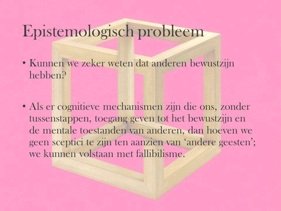 Epistemologisch probleem