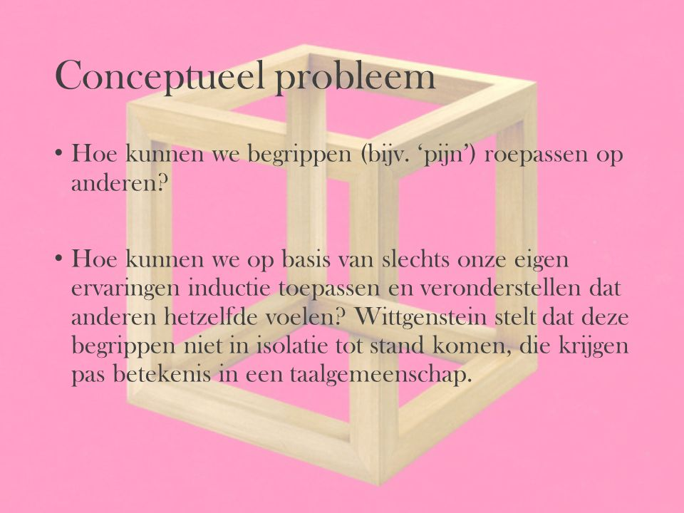 Conceptueel probleem Hoe kunnen we begrippen (bijv. 'pijn') roepassen op anderen