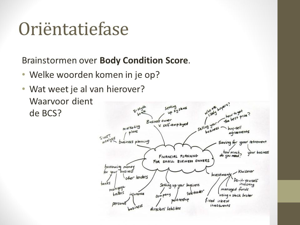 Oriëntatiefase Brainstormen over Body Condition Score.
