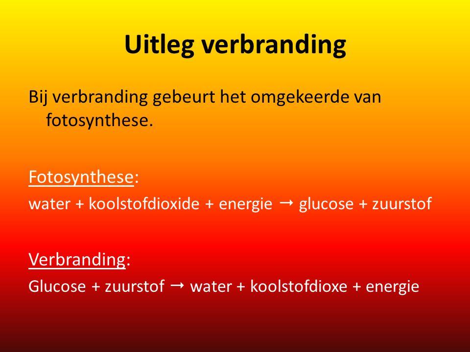 Uitleg verbranding Bij verbranding gebeurt het omgekeerde van fotosynthese. Fotosynthese: water + koolstofdioxide + energie  glucose + zuurstof.