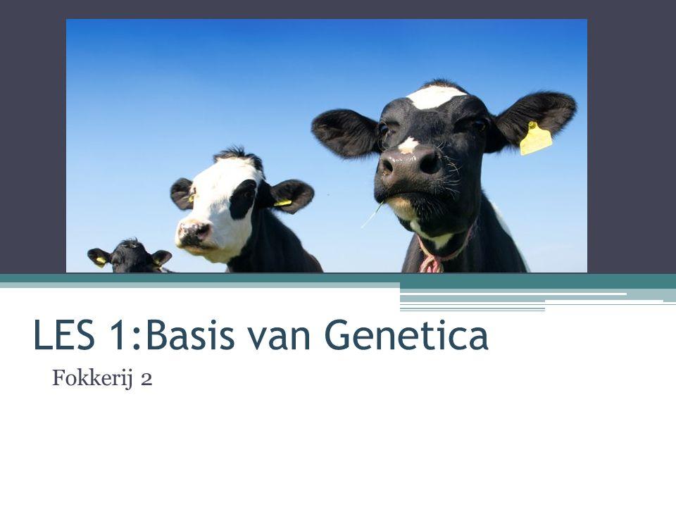 LES 1:Basis van Genetica